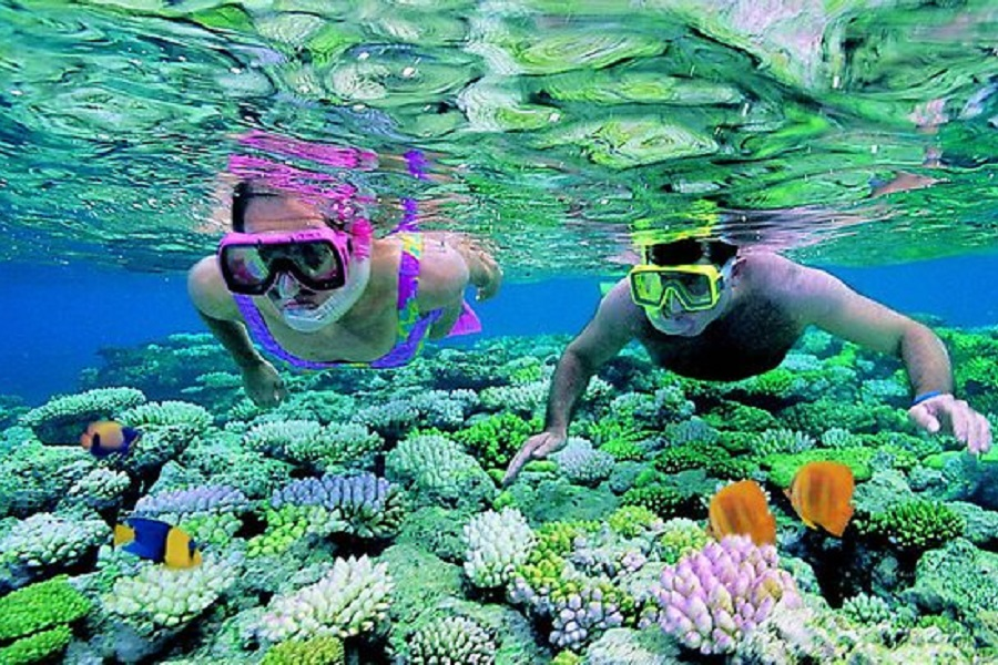 Coral Island Full Day Tour by Speedboat